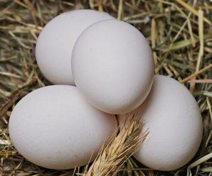 Rüyada Yumurta Görmek Müjdeli Haber Demektir, Pek Çok Hayra İşaret Eder!